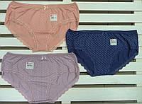 Трусы женские шортики Donella размер XL