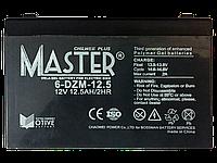 Тяговый аккумулятор Bossman Master 6-DZM-12.5