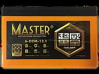 Аккумуляторы к электровелосипедам Master 6-DZM-13.1