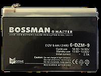 Аккумуляторы к электровелосипедам BOSSMAN 6DZM9