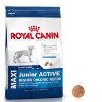 Корм Royal Canin Maxi Junior Active