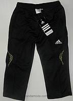 Велосипедки спортивные шорты Adidas