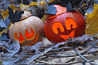 Как создать декор на Хэллоуин своими руками.