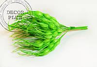 Колосок пшеницы, зеленый
