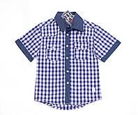Рубашка в клетку Fan&Fan TYPE A-1