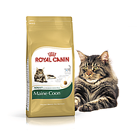 Royal Canin Maine Coon 4 кг - Корм для Мейн-Кун от 15 мес.