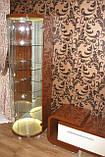 Меблі в вітальню з гнутого МДФ у класичному стилі, фото 2