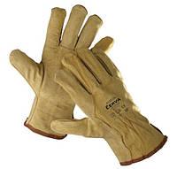 Перчатки кожаные CERVA:  телячий спилок, без подкладки