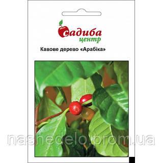 Кофейное дерево Арабика 1 г. Садыба Центр