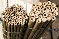 Бамбук-Шест  90 см 12/14 мм