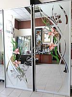 Зеркальные двери для шкафа купе