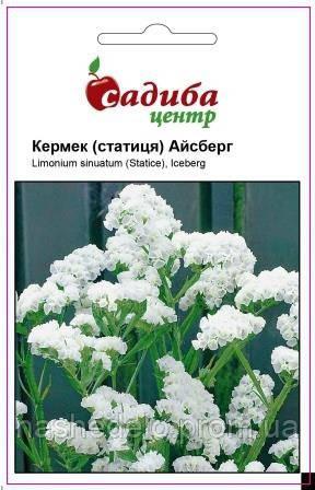 Кермек Айсберг белый 0,1 г. Садыба Центр