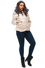 Женская укороченная куртка с капюшоном, фото 2