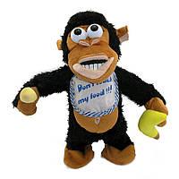 Обезьяна скандалистка с бананом