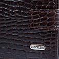 Шикарный мужской кожаный кошелек с тиснением под кожу крокодила CANPELLINI SHI503-11 коричневый, фото 5