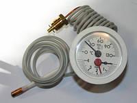 Термоманометр Thermona к котлу 45 EZ/B, арт.21093