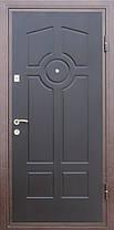 Наружные входные двери порошковая покраска, доставка Киев, фото 3