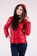Куртка весна, размер 42, код 3523М
