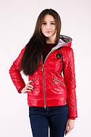 Куртка весна красная тонкий утеплитель, с капюшоном, манжеты на рукавах, резинка внизу, размер 42, код 3523М