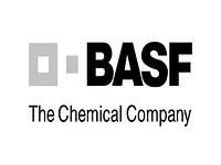 Протравитель Регалис®, в.д.г., 1 кг, BASF AG