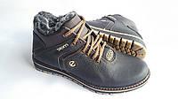 Мужские  зимние кожаные ботинки Ecco Biom black and brown