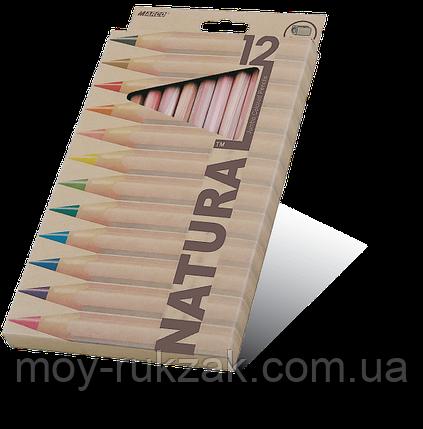 """Карандаши цветные12 цветов MARCO 6400-12CB Natural """"Jumbo""""+точилка, фото 2"""