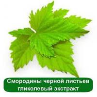 Смородины черной листьев гликолевый экстракт, 1 литр