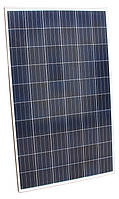 Солнечная панель 260Вт PLM-260P-60 Poly Crystalline SOLAR PANEL Perlight