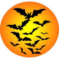 Пугающий праздник в канун Дня всех святых! Хэллоуин в деталях