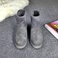 Женские  UGG Abree Mini Grey, женские угги австралия классические мини серые
