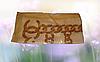 Платок натуральный шелк Chanel, фото 2