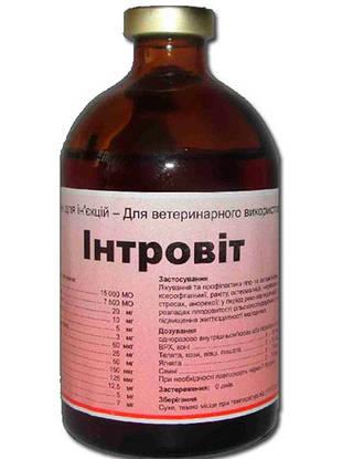 Интровит 100 мл (Interchemie)  Комплексный витаминно-минеральный препарат для ветеринарии