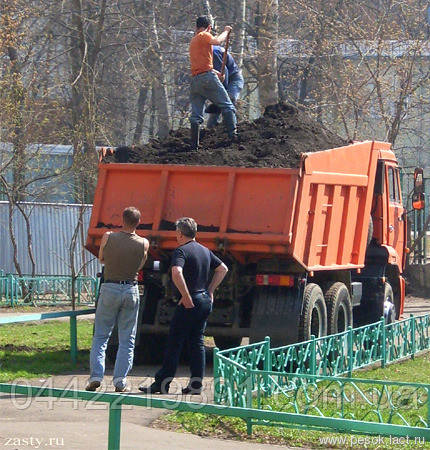 Продам чернозем. Чернозем Киев доставка. Чернозем растительный Киев.