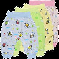 Штанишки цветные на широкой резинке, открытая ножка, кулир (тонкий хлопок), ТМ ALEX, р: 56, 62, 68, 74, 86
