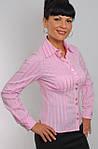Блуза женская (БЛ 026), хлопок,деловая блуза,46,48,50,52,54., фото 2