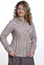 Блуза в бежевых тонах стрейч ботал женская (БЛ 030)