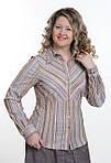Блуза в бежевых тонах стрейч ботал женская (БЛ 030), фото 2
