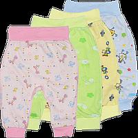 Штанишки цветные на широкой резинке, открытая ножка, кулир (тонкий хлопок), ТМ ALEX, р:56, 62, 68, 74, 86