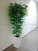 Бамбук искусственный, растения