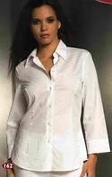 Рубашка, женские рубашки, рубашки мужские, купить рубашку от 120 грн