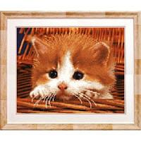 Рыжий котенок. Чарівна Мить. Схема на ткани для вышивания бисером