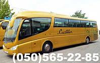 Пассажирские перевозки автобус MAN IRIZAR, фото 1