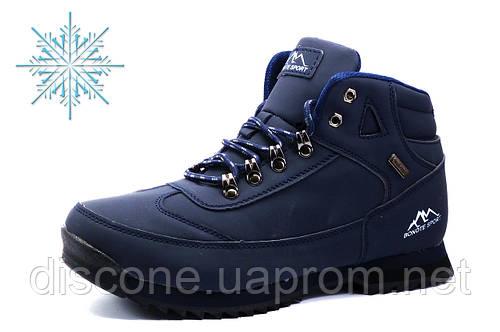 Зимние ботинки Bonote, мужские, на меху, темно-синие