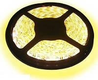 Светодиодная LED лента SMD 5630 - 60 WW, не герметичная