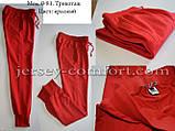 Спортивні штани трикотажні. Мод. 0-81, фото 8
