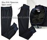 Спортивні штани трикотажні. Мод. 0-81, фото 9