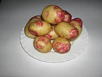 Картофель Пикассо 3кг