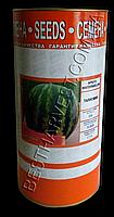 Семена арбуза Талисман, инкрустированные, 500 г