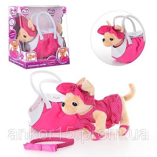 Собачка в сумочці Кіккі модниця