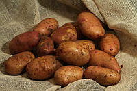 Картофель Тирас 3кг